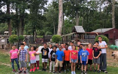 2018 SUMMER CAMP AT THE FARM